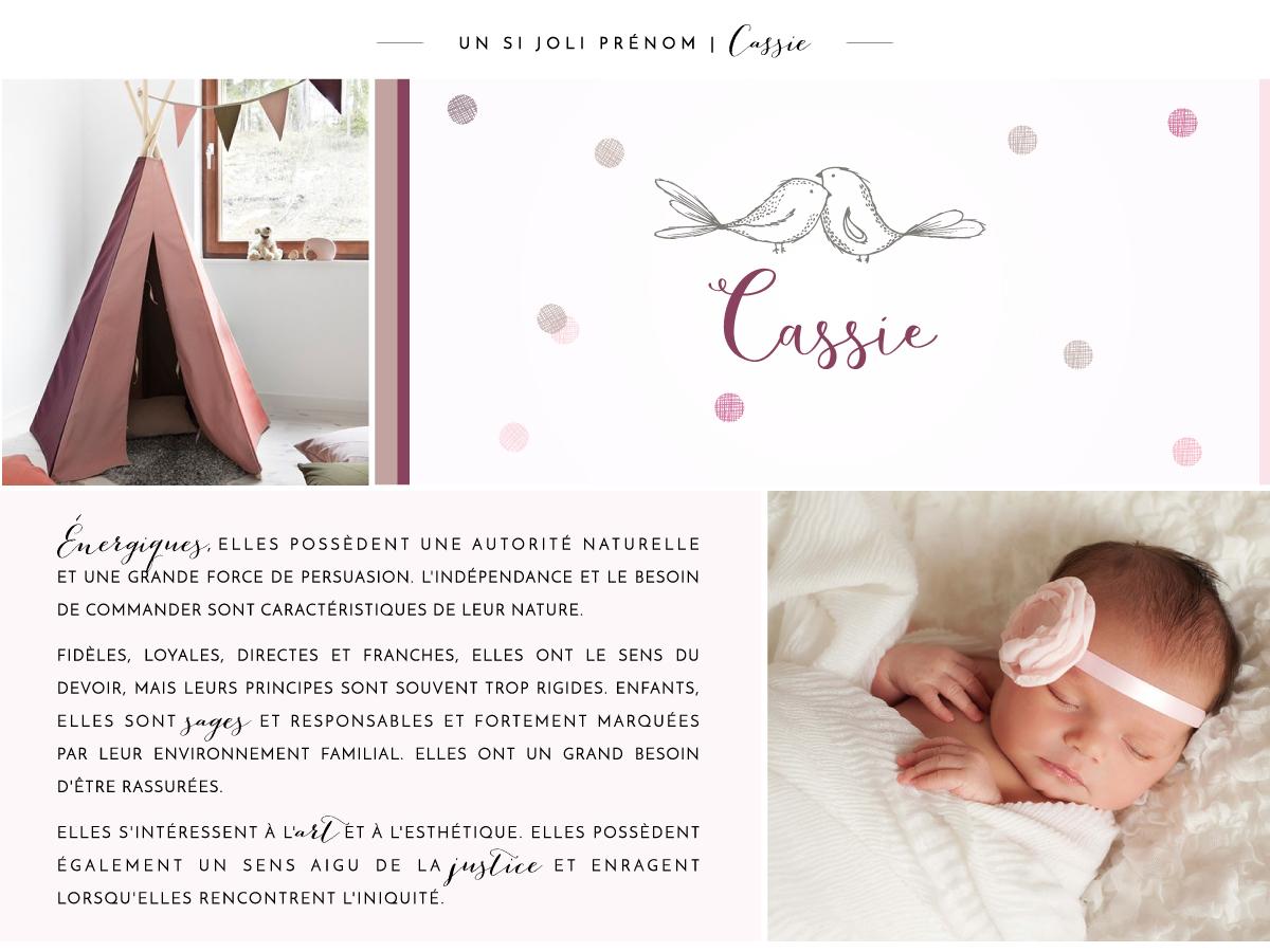 board_fb_Naissance_prenom-B12-003-Cassie