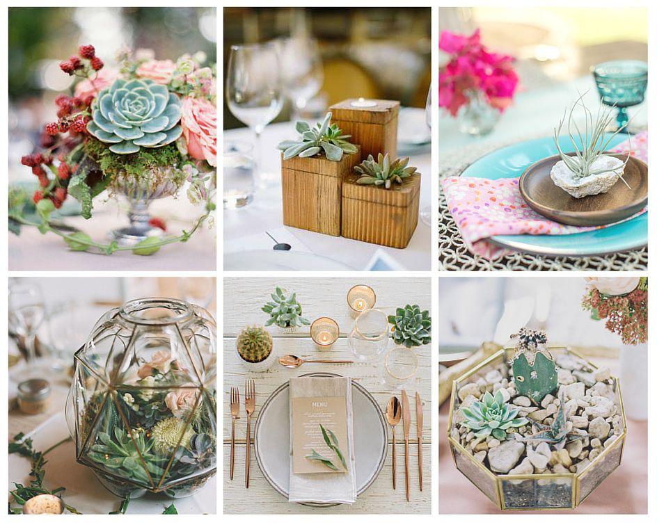 succulentes tables