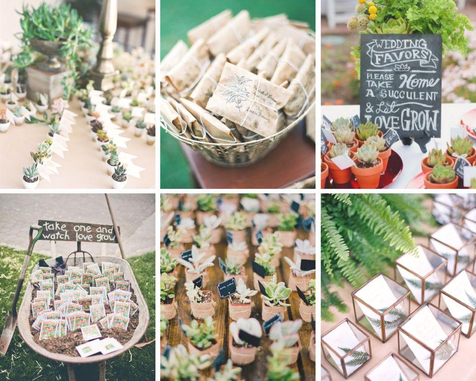 idees cadeaux invites plantes & graines