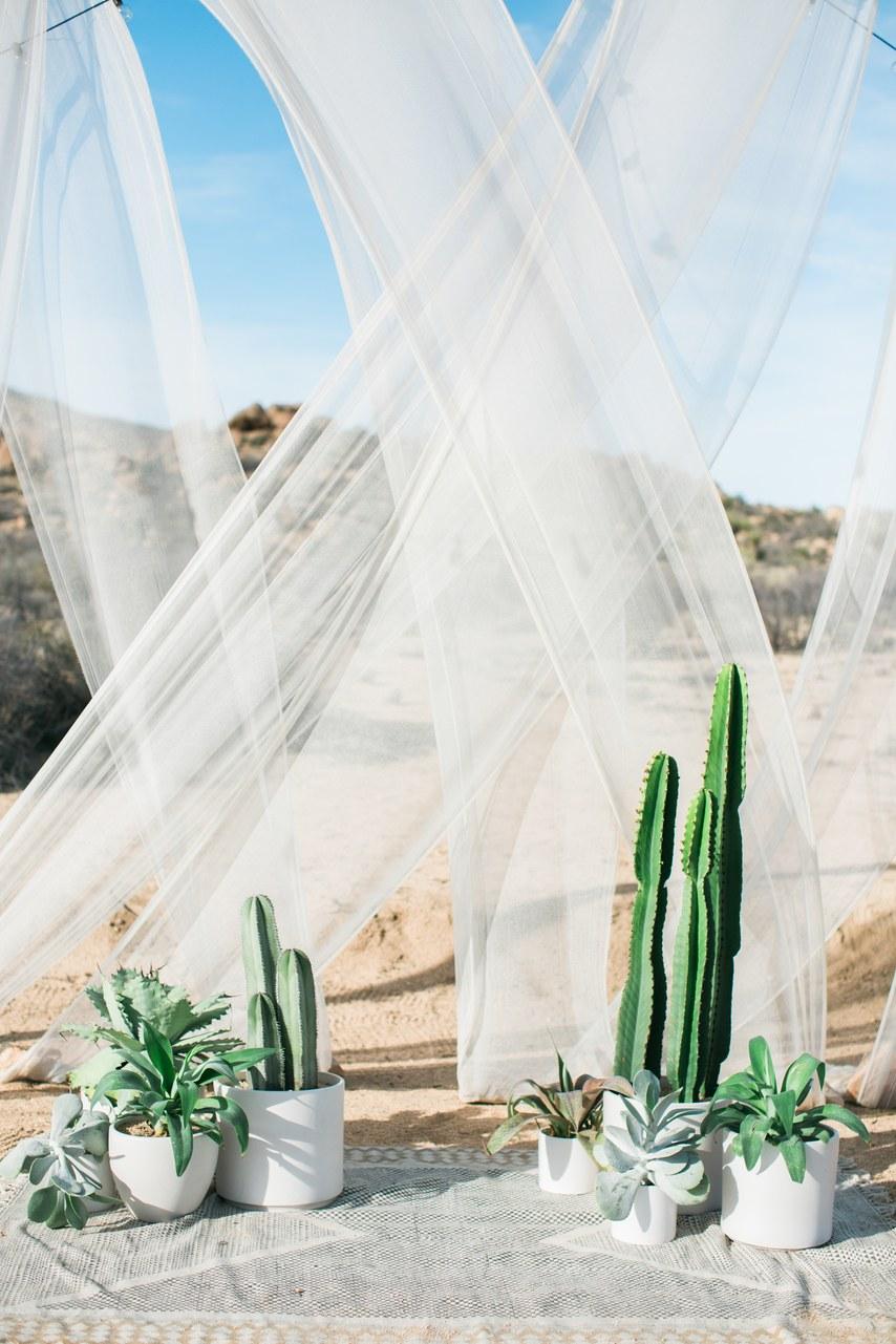 tendance mariage cactus decor