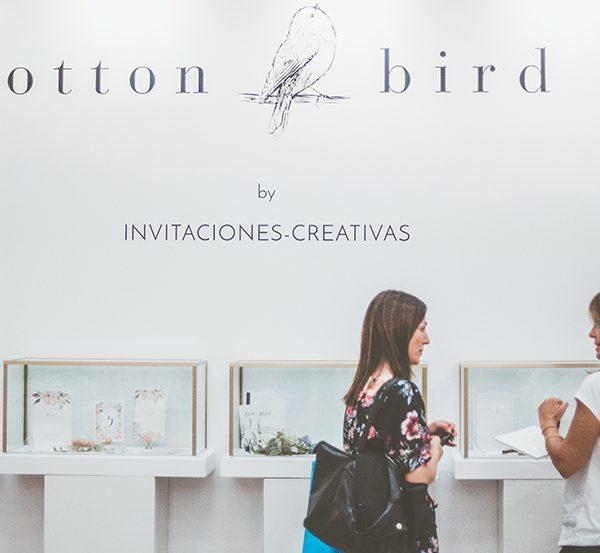 Cottonbird